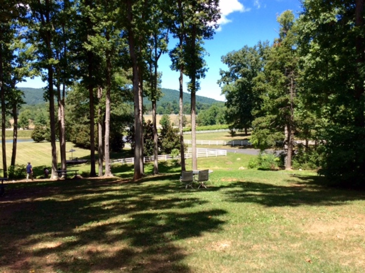 Shenandoah Region PCA event 22nd anniversary picnic Keswick Vineyards Charlottesville